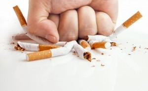 piesc_papierosy-564x350